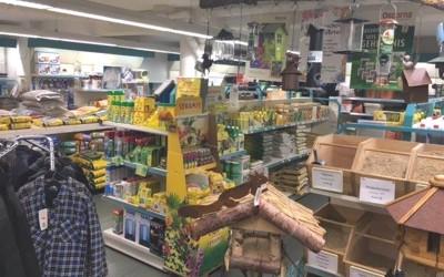 Grüner Markt Kölker